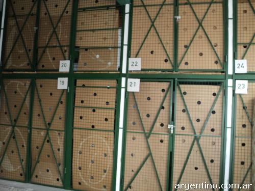 Empresa de Mudanzas en Santa Maria de Huerta, Soria 3