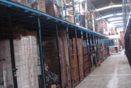 Empresa de Mudanzas en L' Albages, Lleida 7